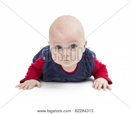 Crawling Toddler Looking Into Camera