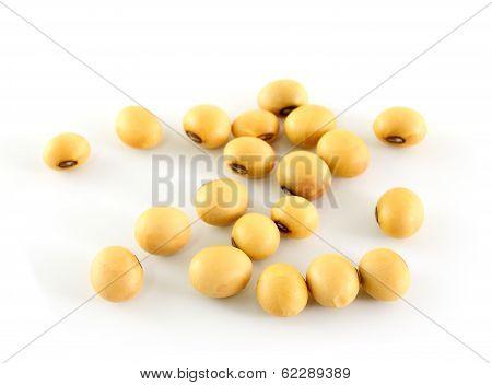 The Soya Beans