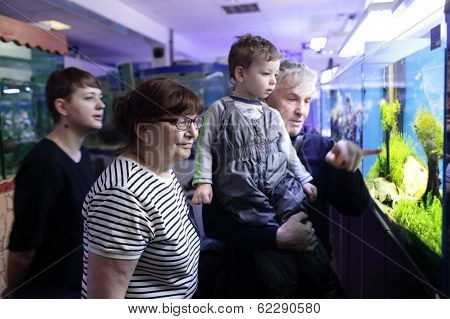 Family Watching Fishes