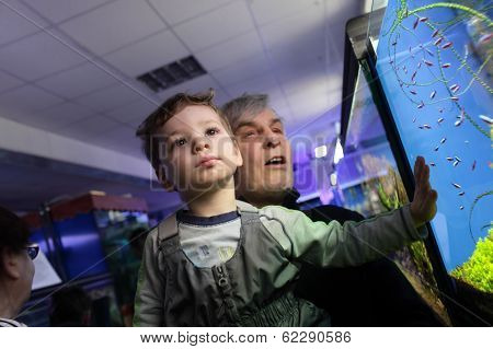 Grandfather With Grandson Watching Fishes