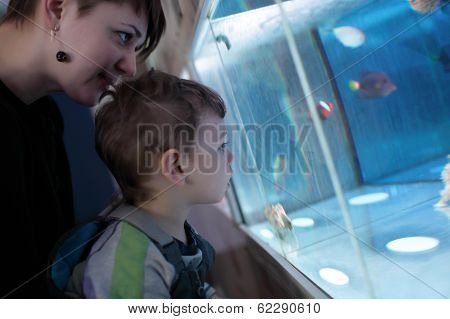 Mother With Son At Oceanarium