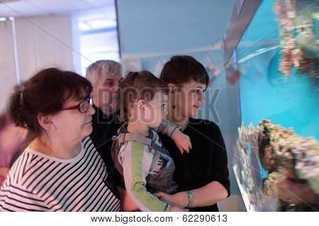 People At An Oceanarium