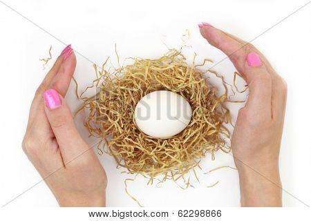 Female hands protecting egg inside nest isolated on white