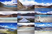 Collection Of Pangong Lake