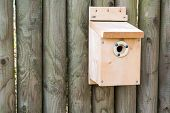stock photo of nesting box  - New bird nesting box with protection metal plate - JPG