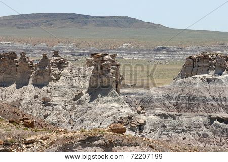 Petrified Wood And Rock Formations