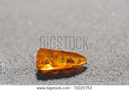 Amber Stone Insect Inclusion  Sand