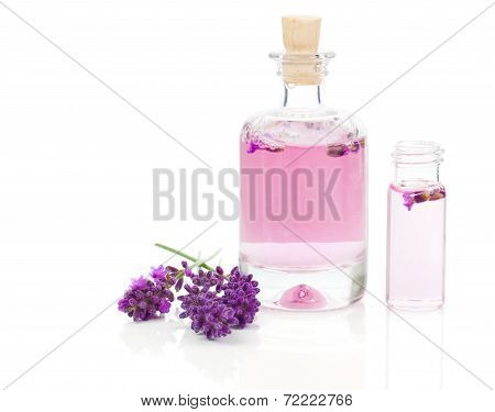Fresh Lavender Blossoms With Natural Handmade Lavender Oil, On White Background