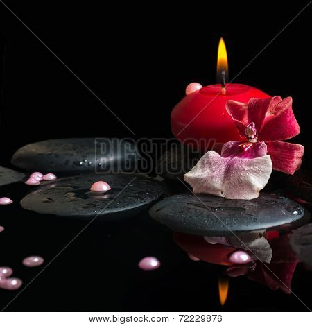 Spa Still Life Of Red Candle, Zen Stones With Drops, Orchid Cambria Flower And Pearl Beads In Water,