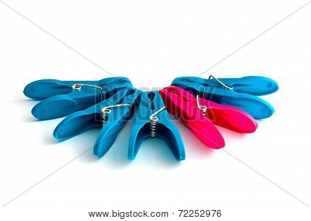 Clothes Pegs