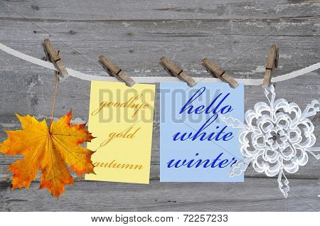 Autumn Leaf And Winter Snowflake