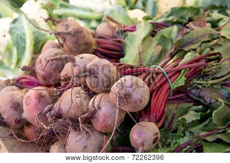 Red beets with tops on farmer's market