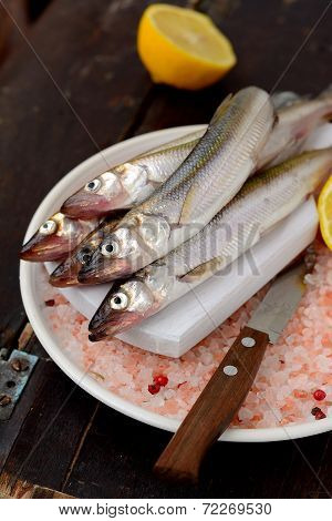 Fresh smelt on  with lemon