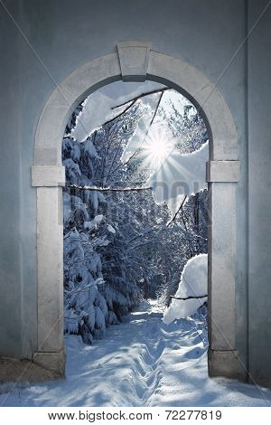 Vintage Arched Door With View To Wintry Forest