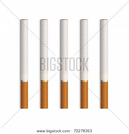 Vector Set of Cigarettes Isolated on White