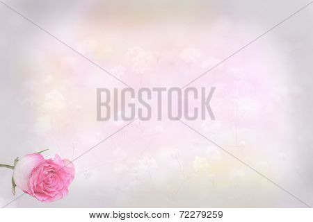 Floral Background With Rose Bud, Card Design Background