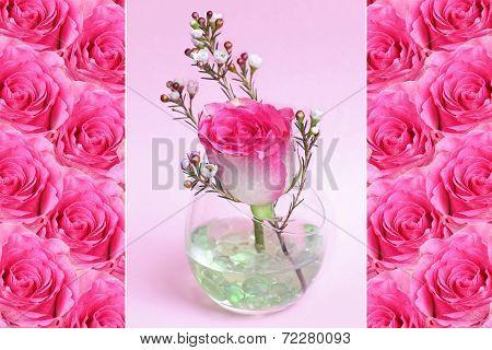 Triple - Pink Roses