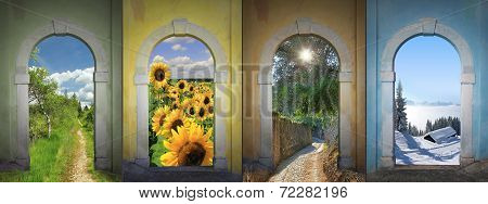 Four Seasons Collage - Bogland, Sunflowers, Alley, Winter Wonderland