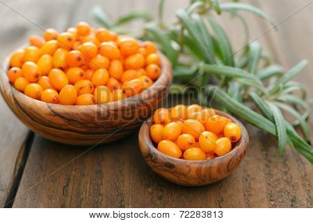 Sea-buckthorn Berries