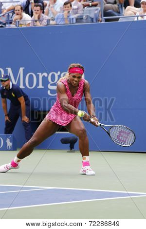Grand Slam champion Serena Williams during third round match at US Open 2014