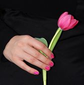 stock photo of condolence  - woman give condolences with a tulip black background - JPG