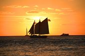 foto of florida-orange  - Sailing Boat cross Sun at sunset in Key West - JPG