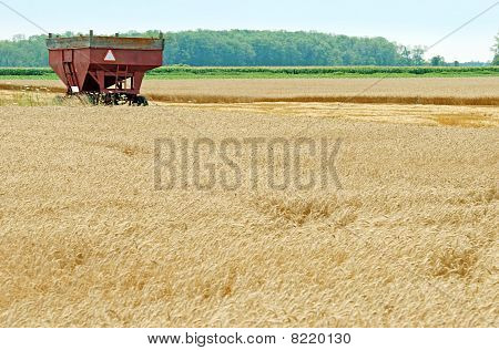 farm trailer in wheat field