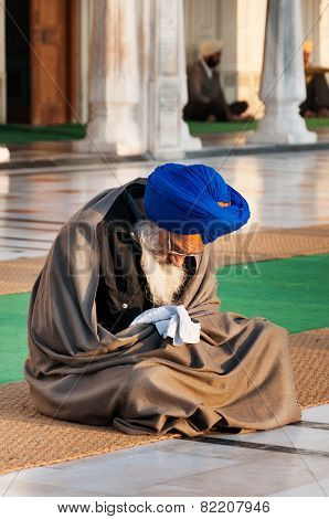Sikh Man Praying In Golden Temple In The Early Morning. Amritsar. India