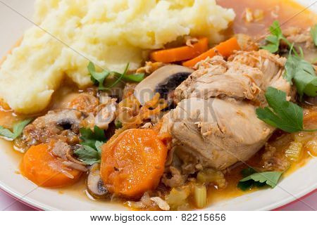 A meal of chicken cacciatore, braised chicken cooked with tomato, celery, carrot, onion, mushrooms and stock and served with mashed potatoes, viewed close-up.