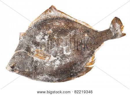 Frozen flounder