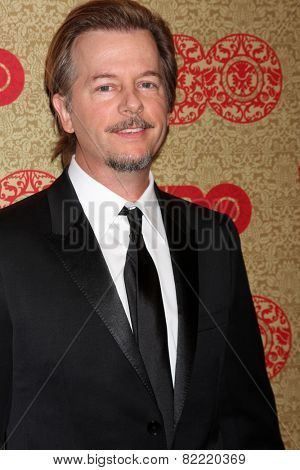 LOS ANGELES - JAN 12:  David Spade at the HBO 2014 Golden Globe Party  at Beverly Hilton Hotel on January 12, 2014 in Beverly Hills, CA
