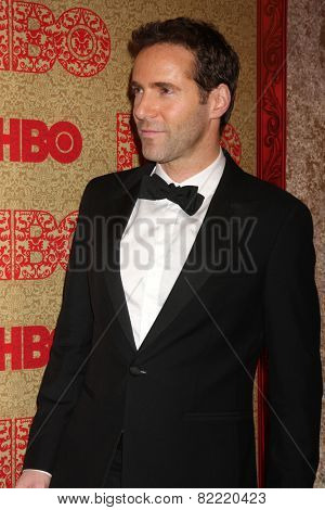 LOS ANGELES - JAN 12:  Alessandro Nivola at the HBO 2014 Golden Globe Party  at Beverly Hilton Hotel on January 12, 2014 in Beverly Hills, CA