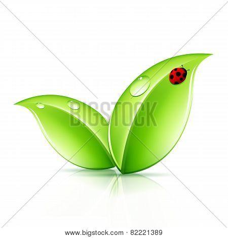 Green Leaves Symbol
