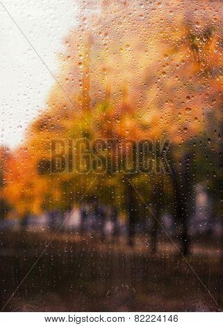 Rainy autumn landscape through a window with raindrops. autumnal mood.