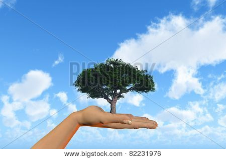3D render of a female hand holding a tree against a blue sky with clouds