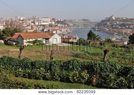 View of the historic city of Porto with the Dom Luis bridge