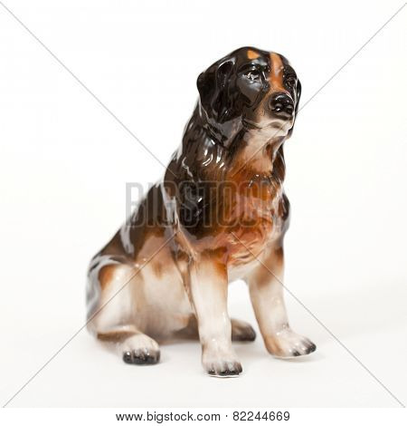 Bernese Mountain Dog, Bernese Mountain Cattle Dog, dog breed isolated on white