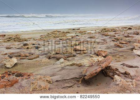 Rocky Shore Skeleton Coast Namibia