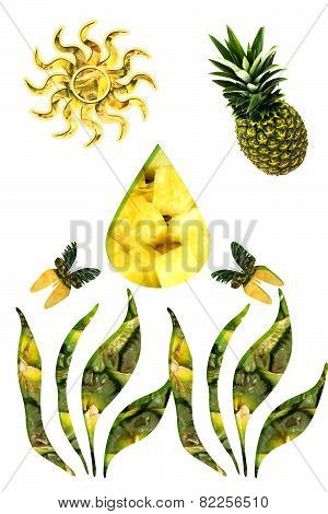 Applique From Photos Pineapples
