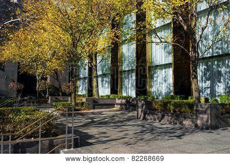 Autumn Office Building