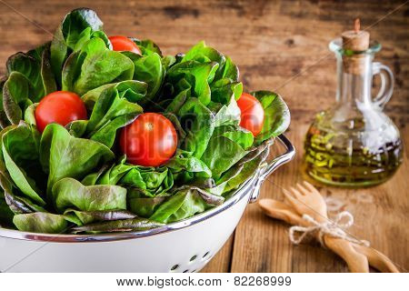 Lunch Time: Fresh Green Organic Lettuce With Cherry Tomatoes