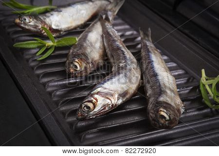 Fresh Fish With Herbs On Grill.