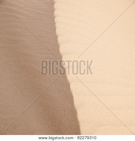 Sand Surface