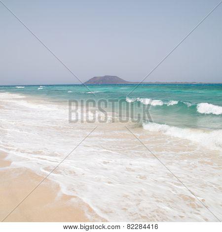 White Sand Beach On Fuerteventura (corralejo