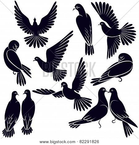 Silhouettes Of Pigeons That Fly And Sit