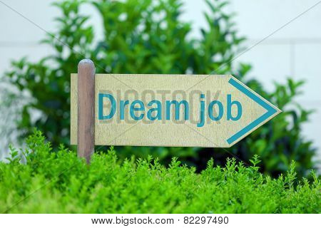 Pointer with Dream Job text on it on green bush background