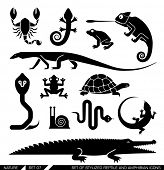stock photo of lizards  - Set of various animal icons - JPG