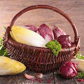 image of chicory  - raw vegetable - JPG