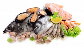 image of shell-fishes  - Fresh fish and other seafood isolated on white - JPG