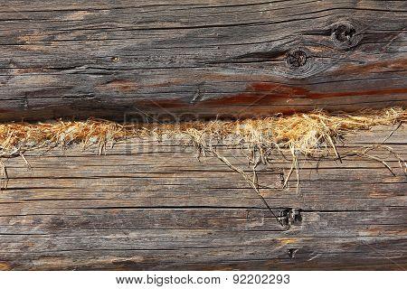 Old Log Wall Taken Closeup.